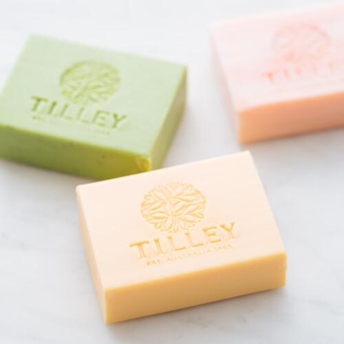 tilley%e5%bd%a2%e8%b1%a1%e5%9c%96-1000